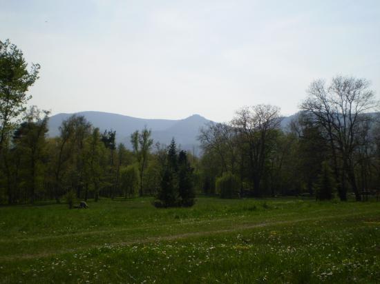 Altitona (Massif du Mont-Sainte-Odile, Alsace) - Vue depuis le domaine de la Leonardsau.