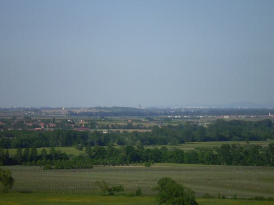 La plaine d'Alsace.