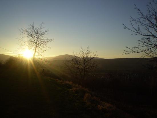 Crépuscule sur le piémont de Rosheim.