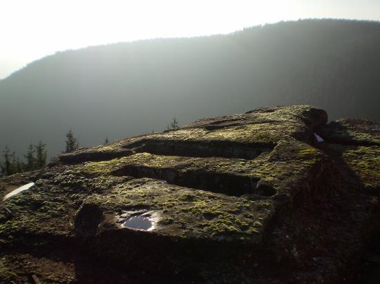 Altitona (Massif du Mont-Sainte-Odile, Alsace) - Tombes mérovingiennes.