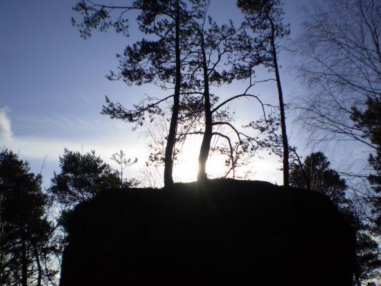 Altitona (Massif du Mont-Sainte-Odile, Alsace) - La coiffe du Wachtstein