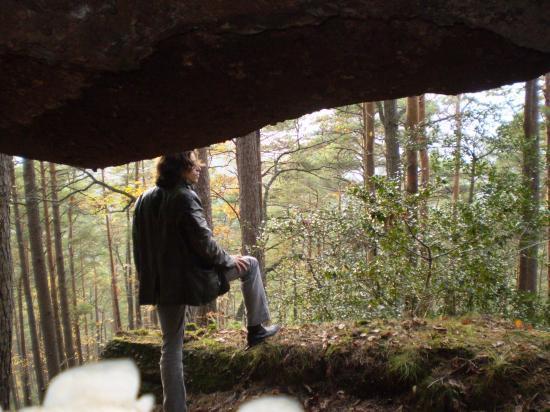 Altitona (Massif du Mont-Sainte-Odile, Alsace) - La chambre d'Echo.