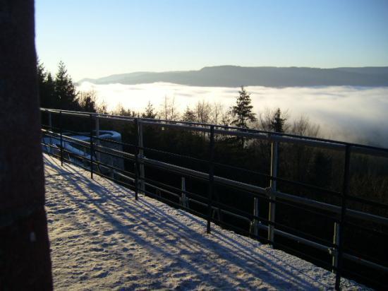 Altitona (Massif du Mont-Sainte-Odile, Alsace) - Mer de nuages.