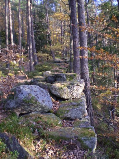 Altitona (Massif du Mont-Sainte-Odile, Alsace) - Le mur païen.